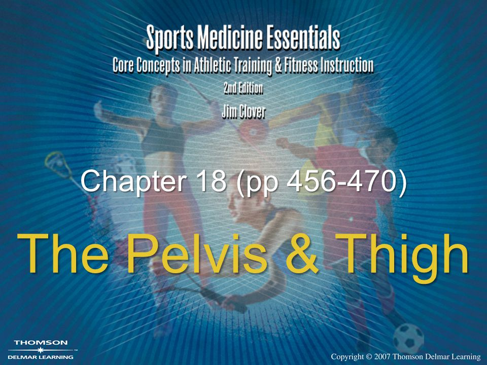 Chapter 18 (pp 456-470) The Pelvis & Thigh