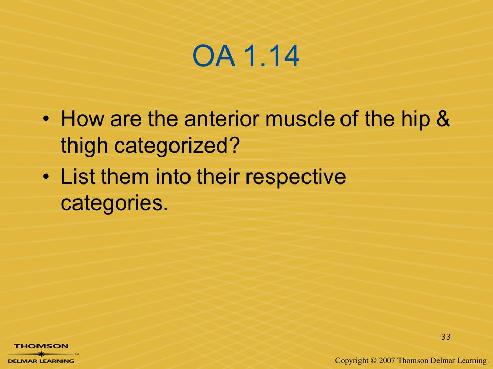 OA 1.14 How are the anterior muscle of the hip & thigh categorized