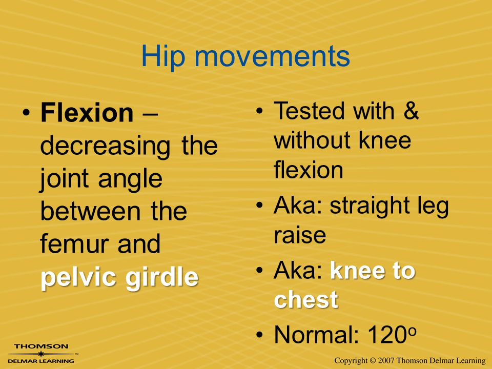 Hip movements Flexion – decreasing the joint angle between the femur and pelvic girdle. Tested with & without knee flexion.
