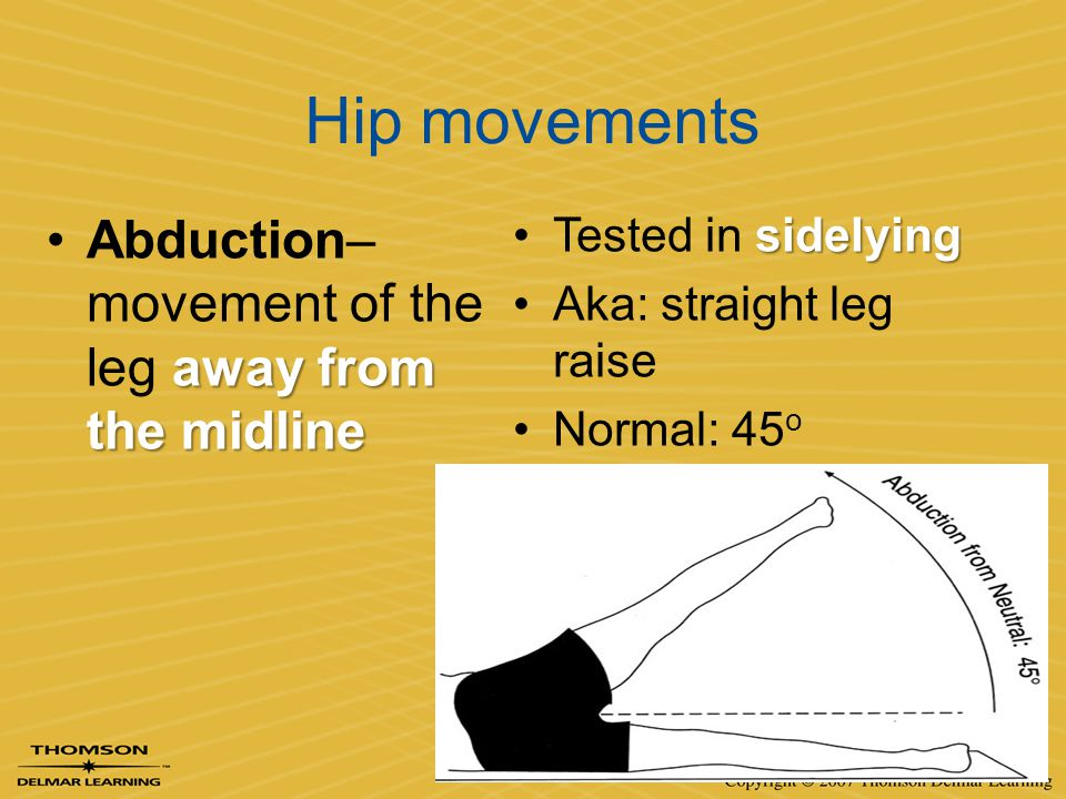 Hip movements Abduction– movement of the leg away from the midline