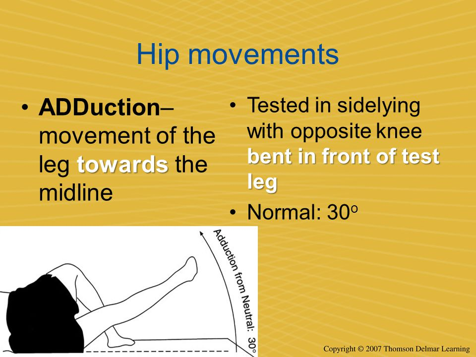 Hip movements ADDuction– movement of the leg towards the midline