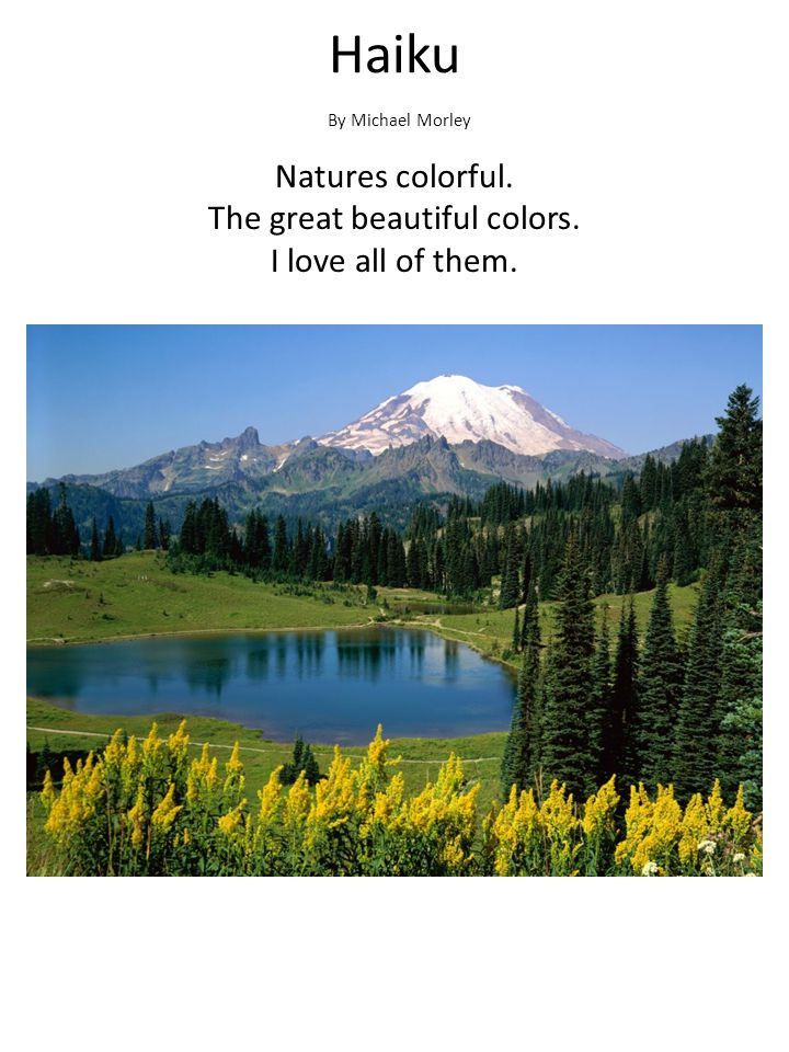 Natures colorful. The great beautiful colors. I love all of them.