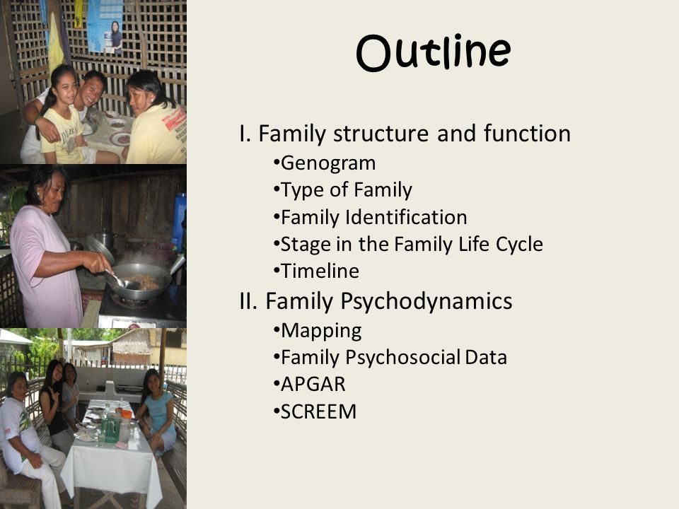 Outline I. Family structure and function II. Family Psychodynamics
