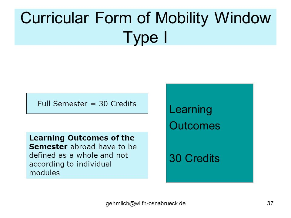 Curricular Form of Mobility Window Type I