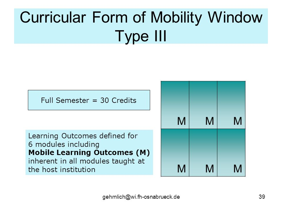 Curricular Form of Mobility Window Type III