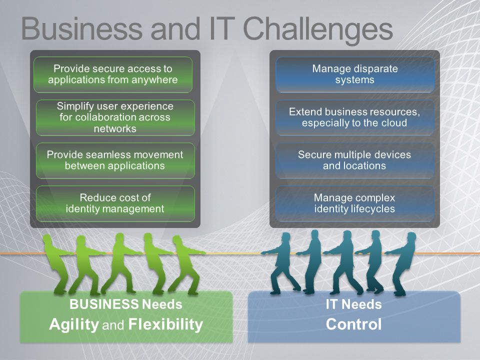 Business and IT Challenges