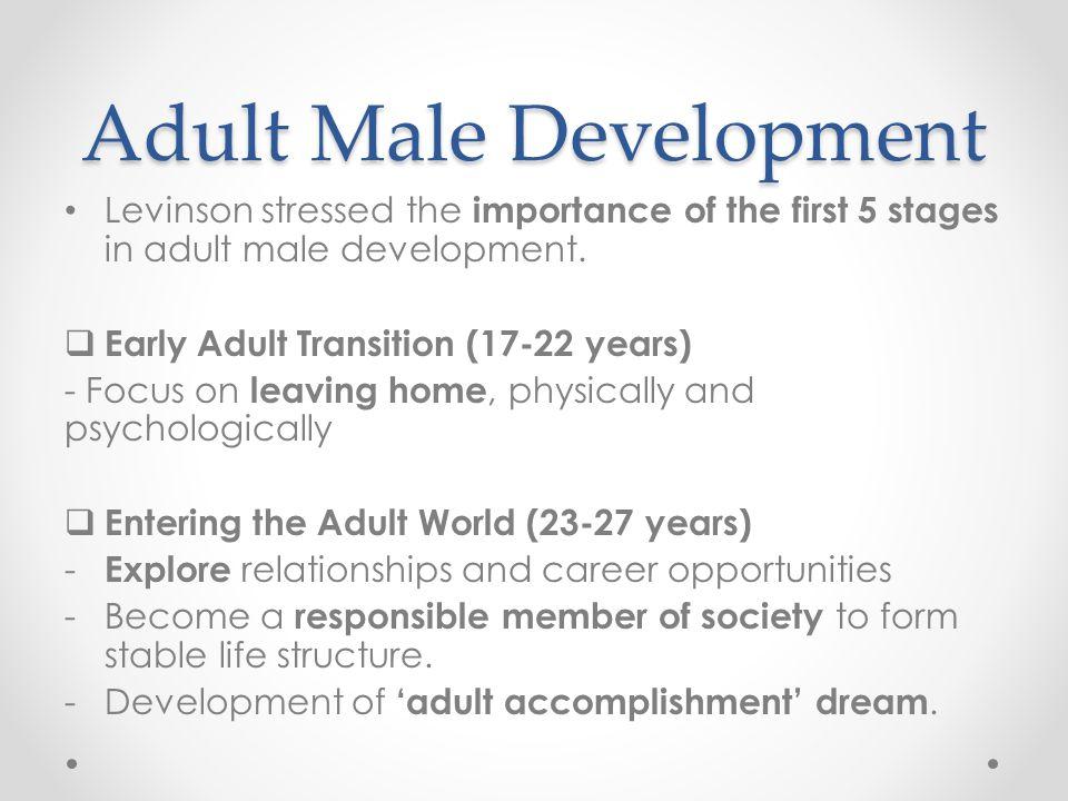 Adult Male Development