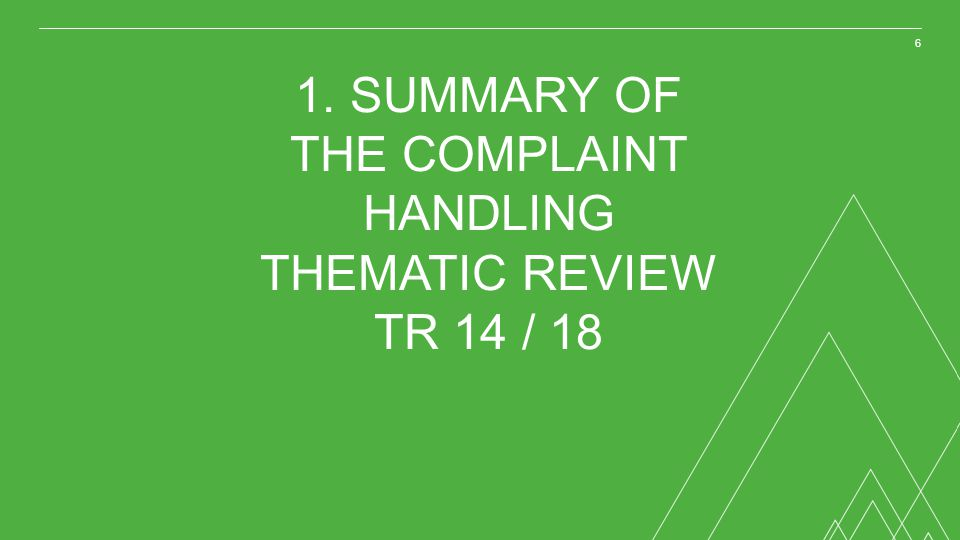 1. SUMMARY OF THE COMPLAINT HANDLING THEMATIC REVIEW TR 14 / 18