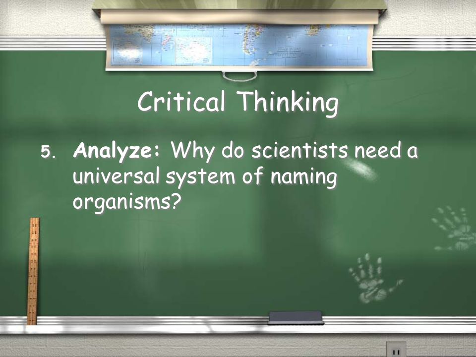 Critical Thinking Analyze: Why do scientists need a universal system of naming organisms