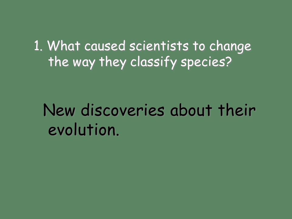 New discoveries about their evolution.