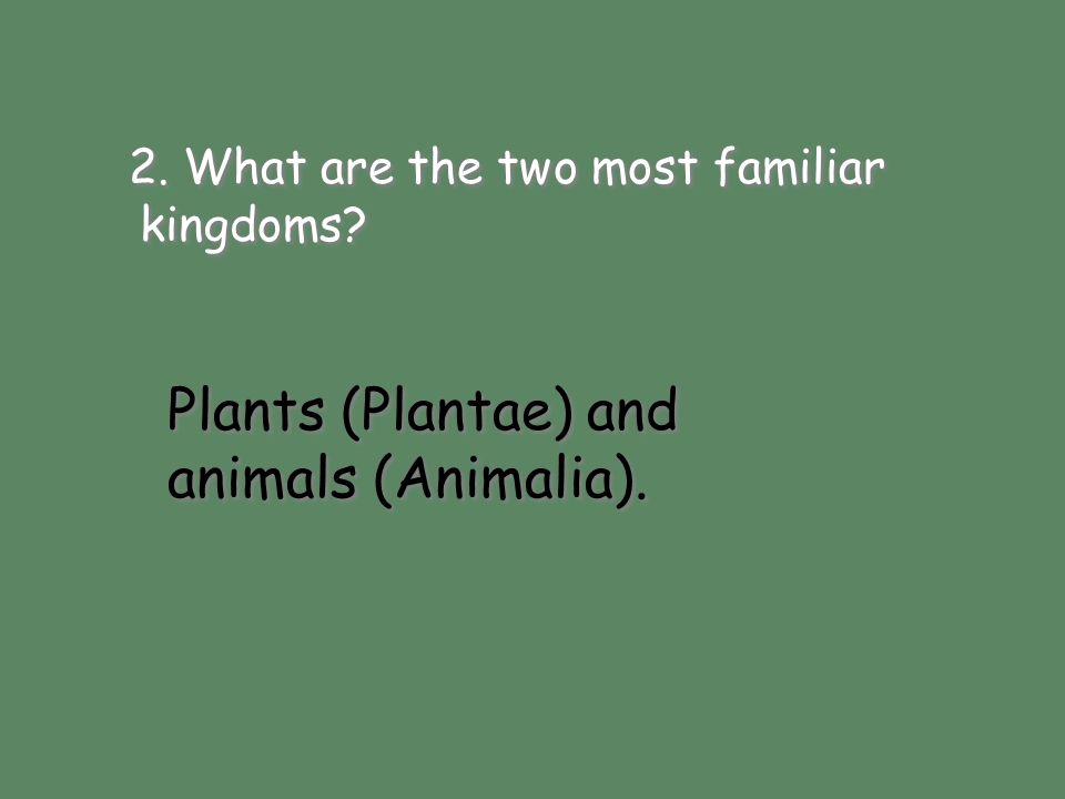 Plants (Plantae) and animals (Animalia).