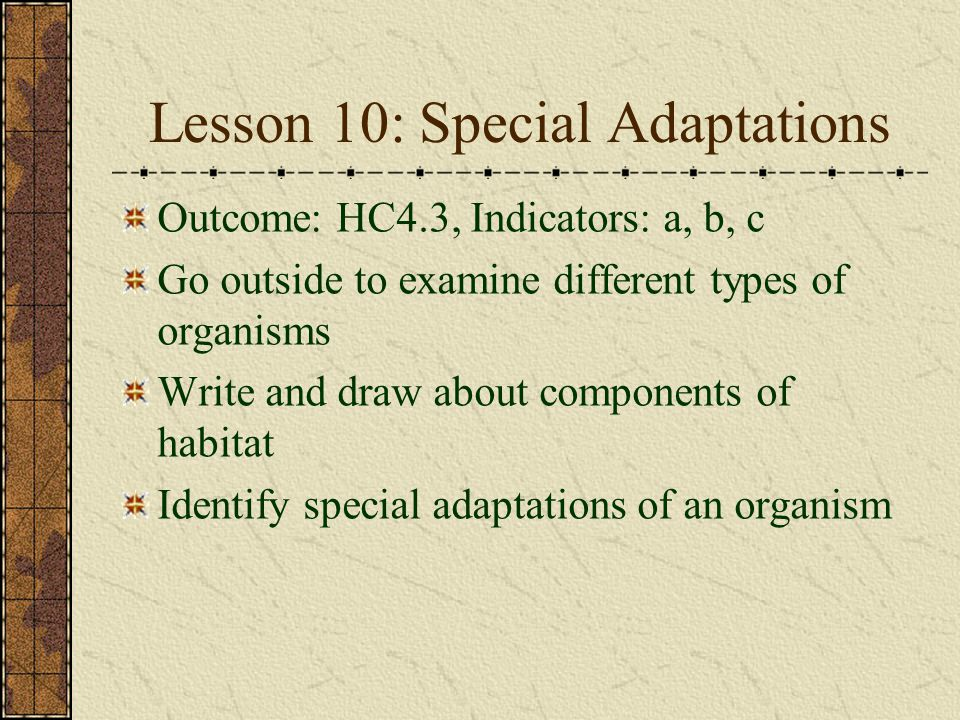 Lesson 10: Special Adaptations