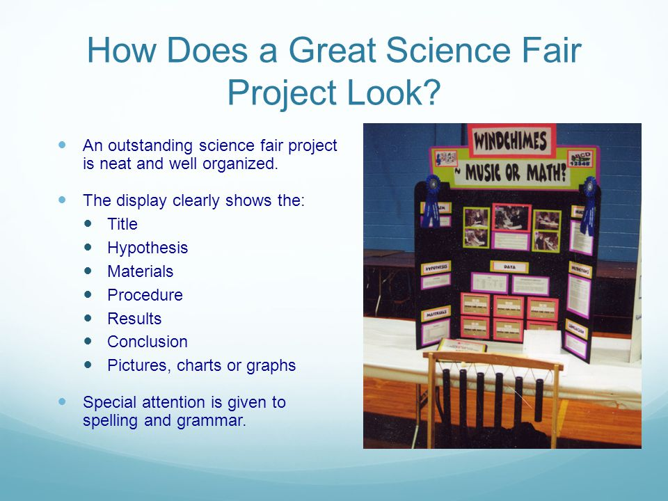 How Does a Great Science Fair Project Look