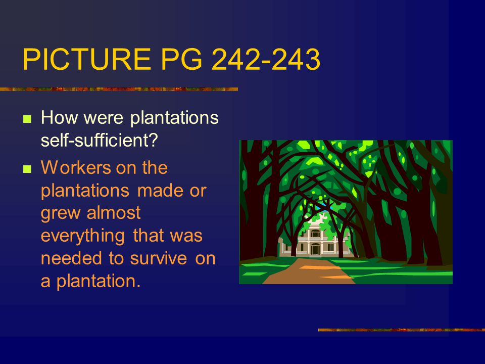 PICTURE PG 242-243 How were plantations self-sufficient
