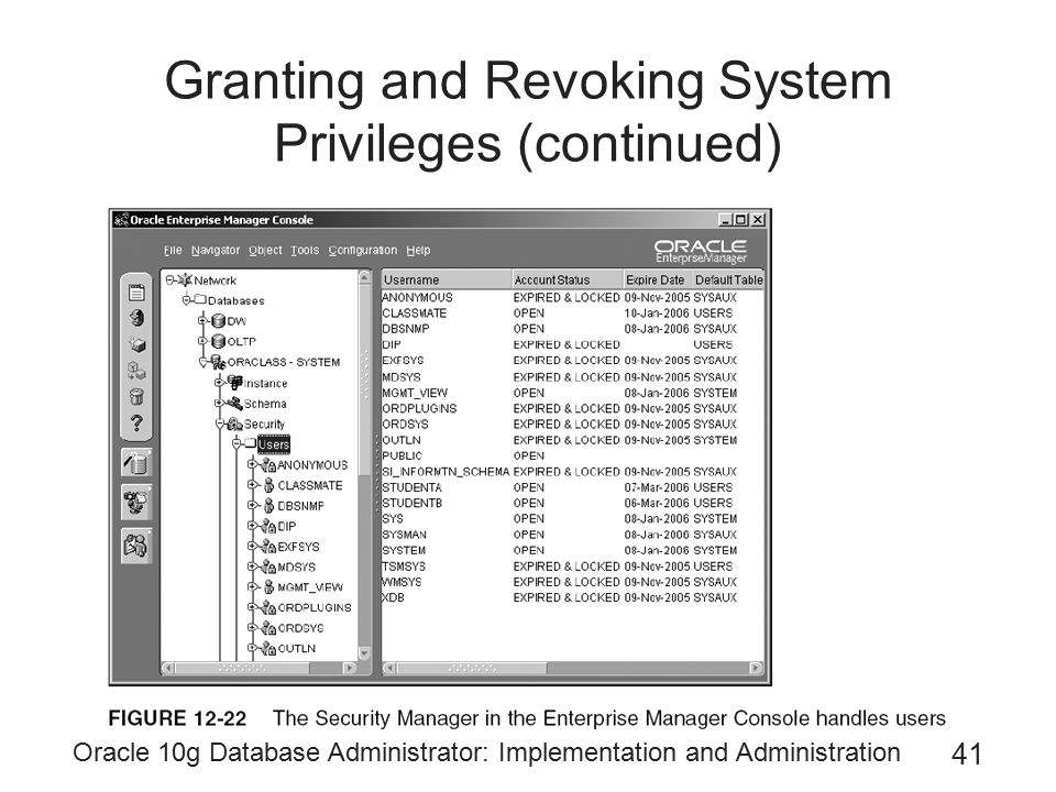 Granting and Revoking System Privileges (continued)