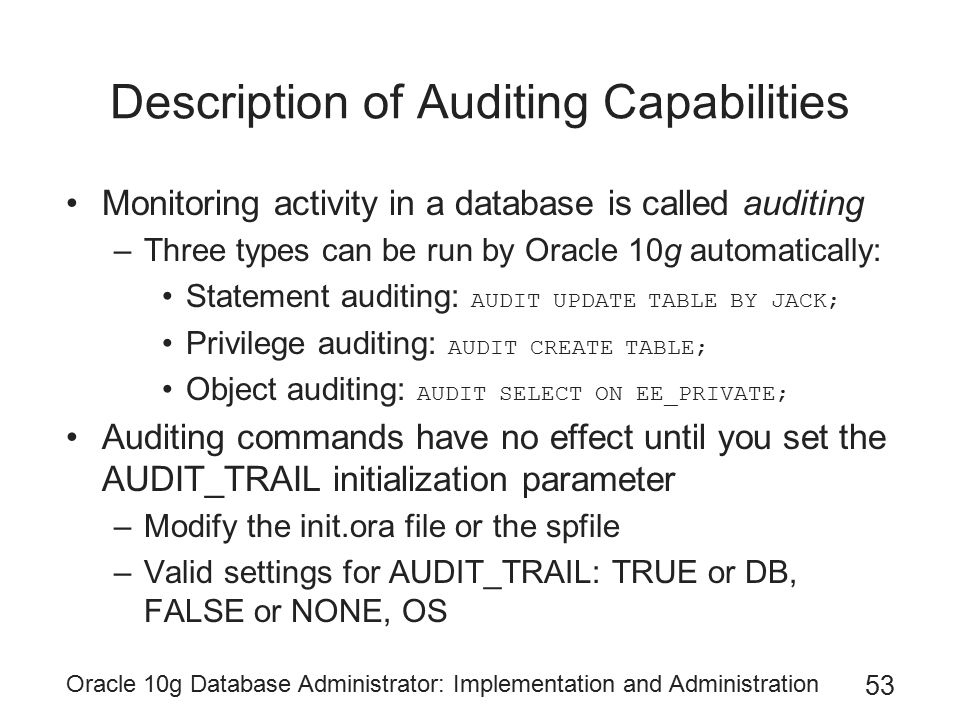 Description of Auditing Capabilities