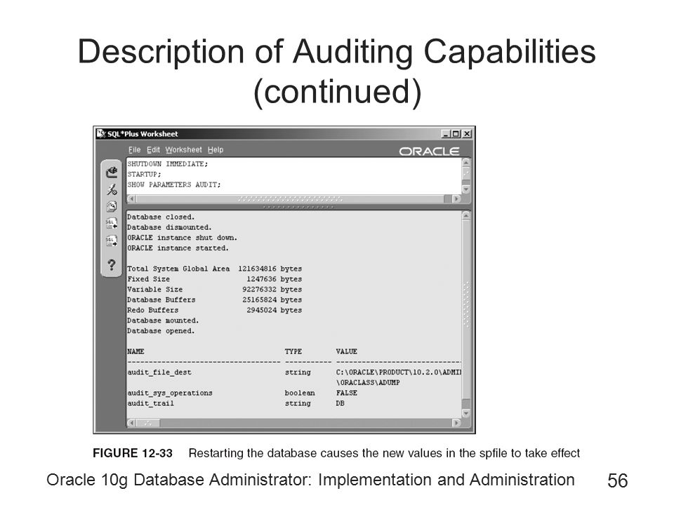 Description of Auditing Capabilities (continued)