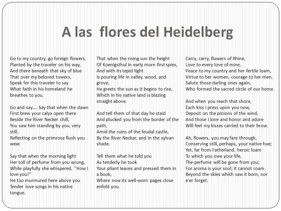 A las flores del Heidelberg