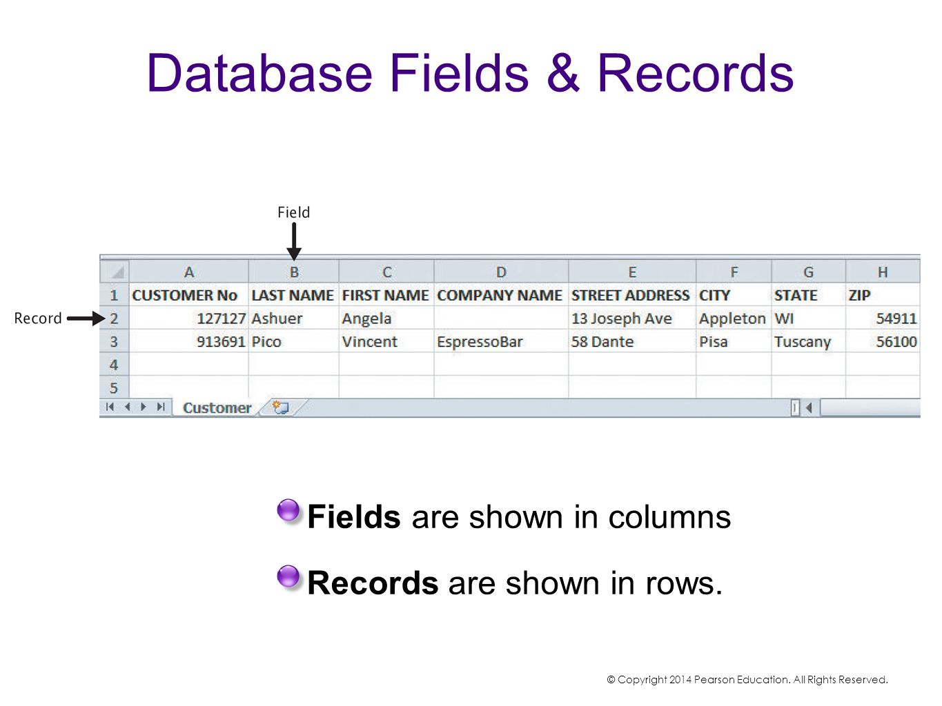 Database Fields & Records