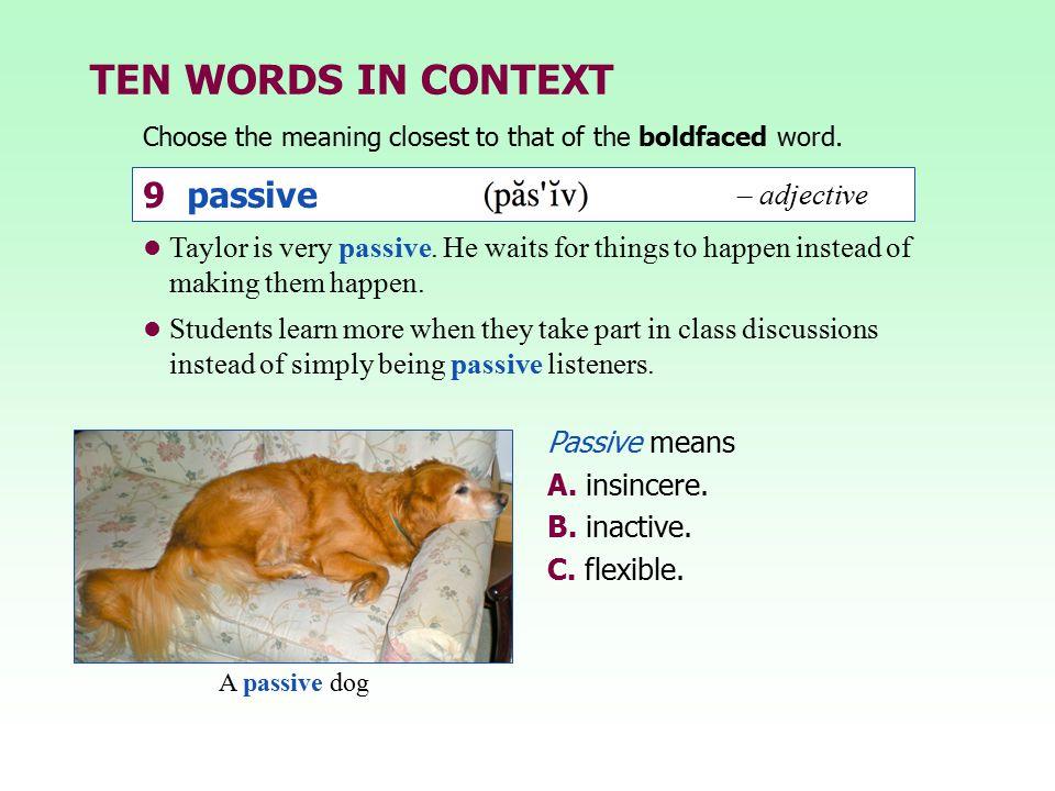 TEN WORDS IN CONTEXT 9 passive – adjective