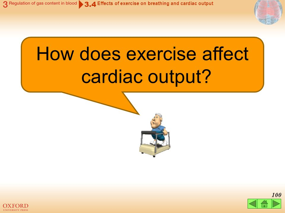 How does exercise affect cardiac output