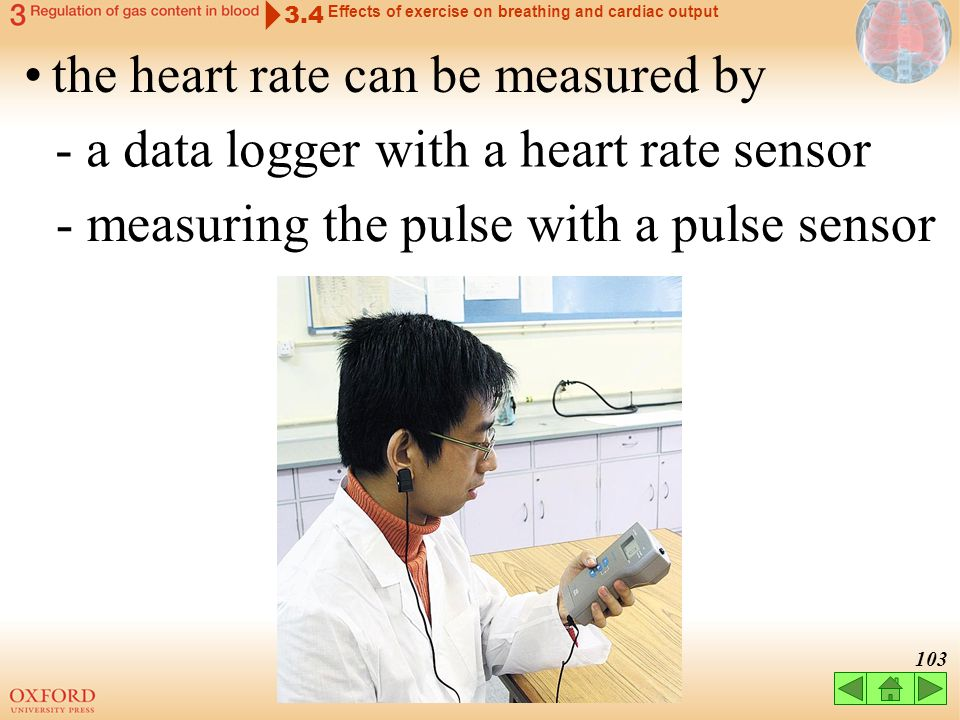 the heart rate can be measured by