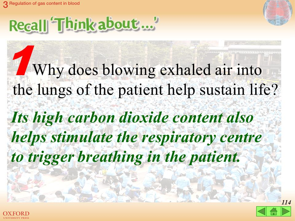 1 Why does blowing exhaled air into