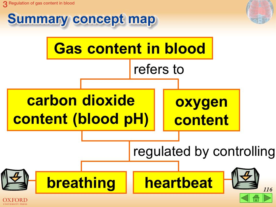 carbon dioxide content (blood pH)