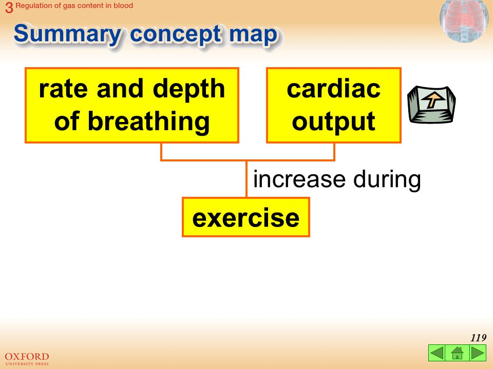 rate and depth of breathing