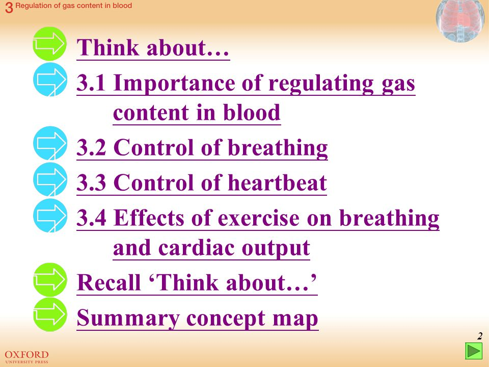 Think about… 3.1 Importance of regulating gas content in blood. 3.2 Control of breathing. 3.3 Control of heartbeat.