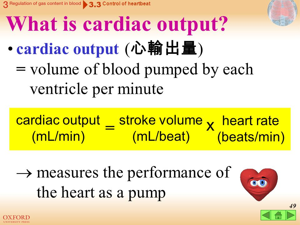 3.3 Control of heartbeat. What is cardiac output cardiac output (心輸出量) = volume of blood pumped by each.