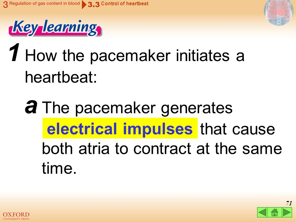 1 How the pacemaker initiates a heartbeat: