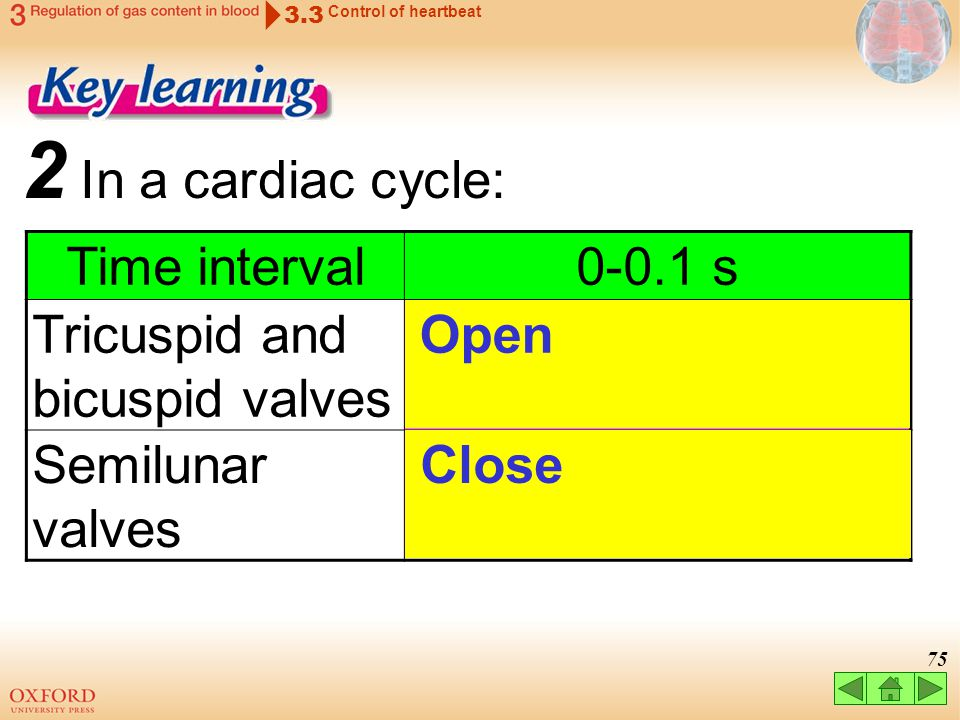 2 In a cardiac cycle: Time interval 0-0.1 s