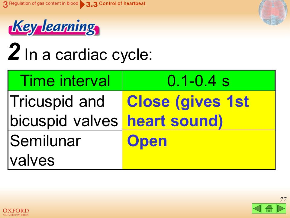 2 In a cardiac cycle: Time interval 0.1-0.4 s