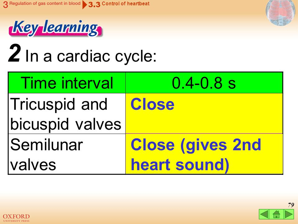 2 In a cardiac cycle: Time interval 0.4-0.8 s