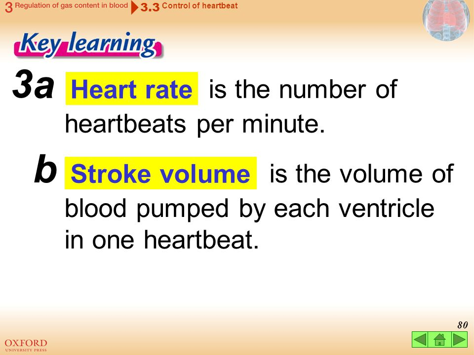 a is the number of heartbeats per minute.