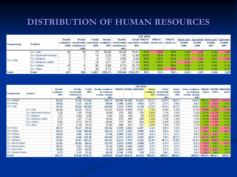 DISTRIBUTION OF HUMAN RESOURCES