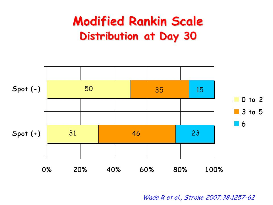 Modified Rankin Scale Distribution at Day 30