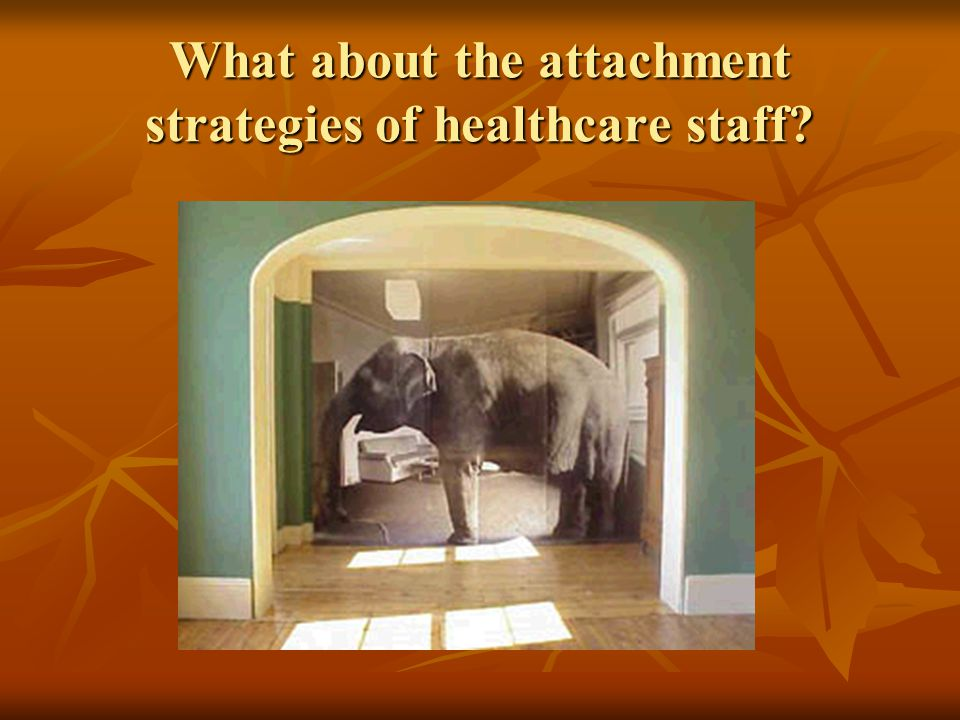 What about the attachment strategies of healthcare staff