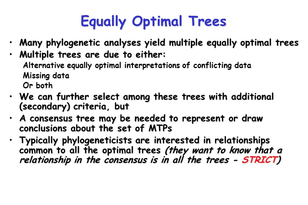 Equally Optimal Trees Many phylogenetic analyses yield multiple equally optimal trees. Multiple trees are due to either: