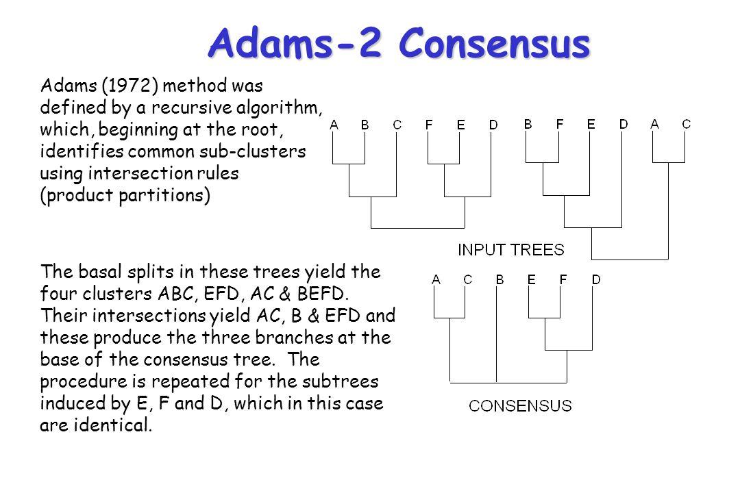 Adams-2 Consensus