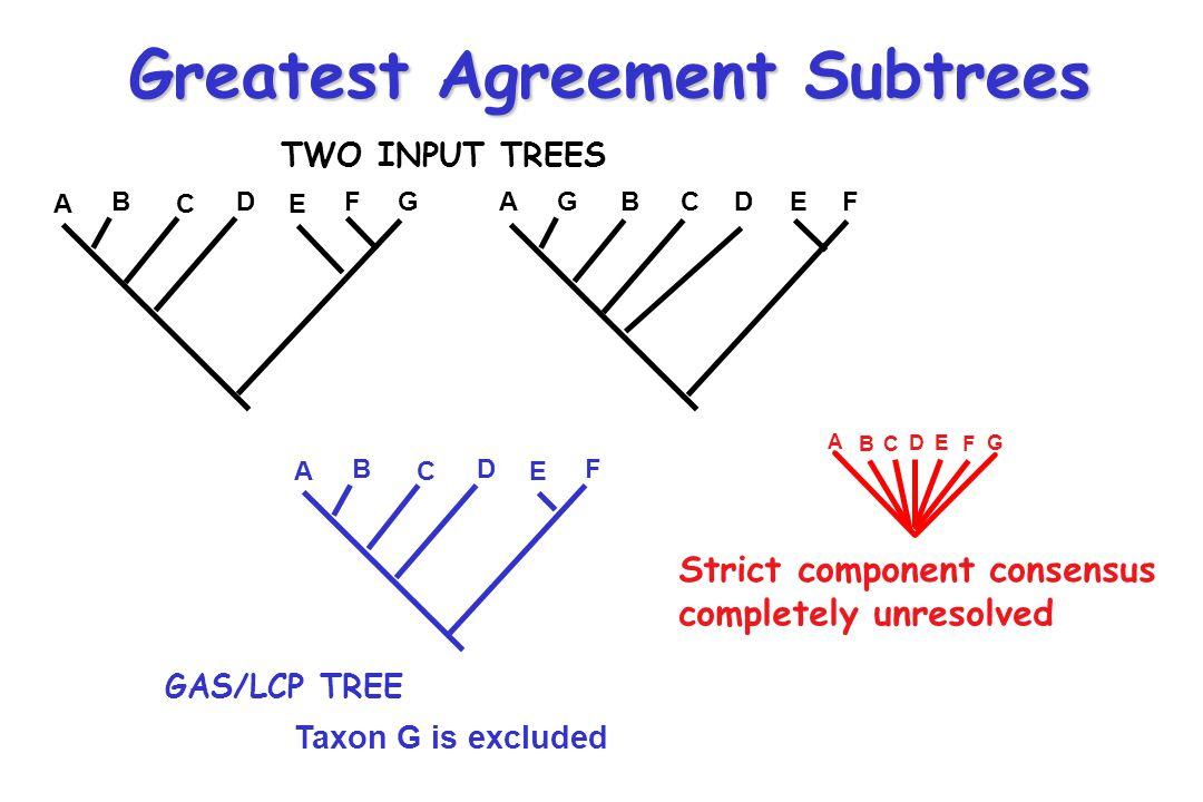Greatest Agreement Subtrees
