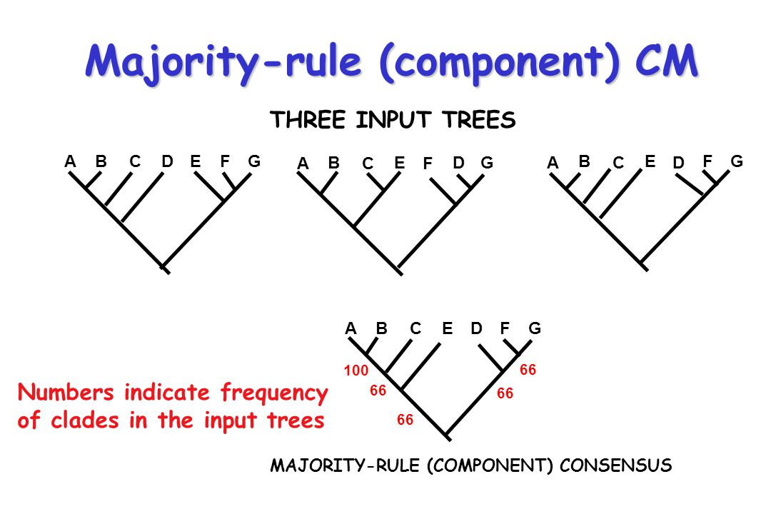 Majority-rule (component) CM