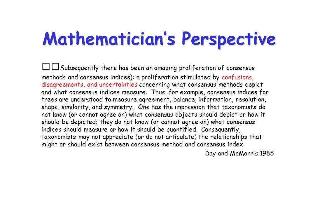 Mathematician's Perspective