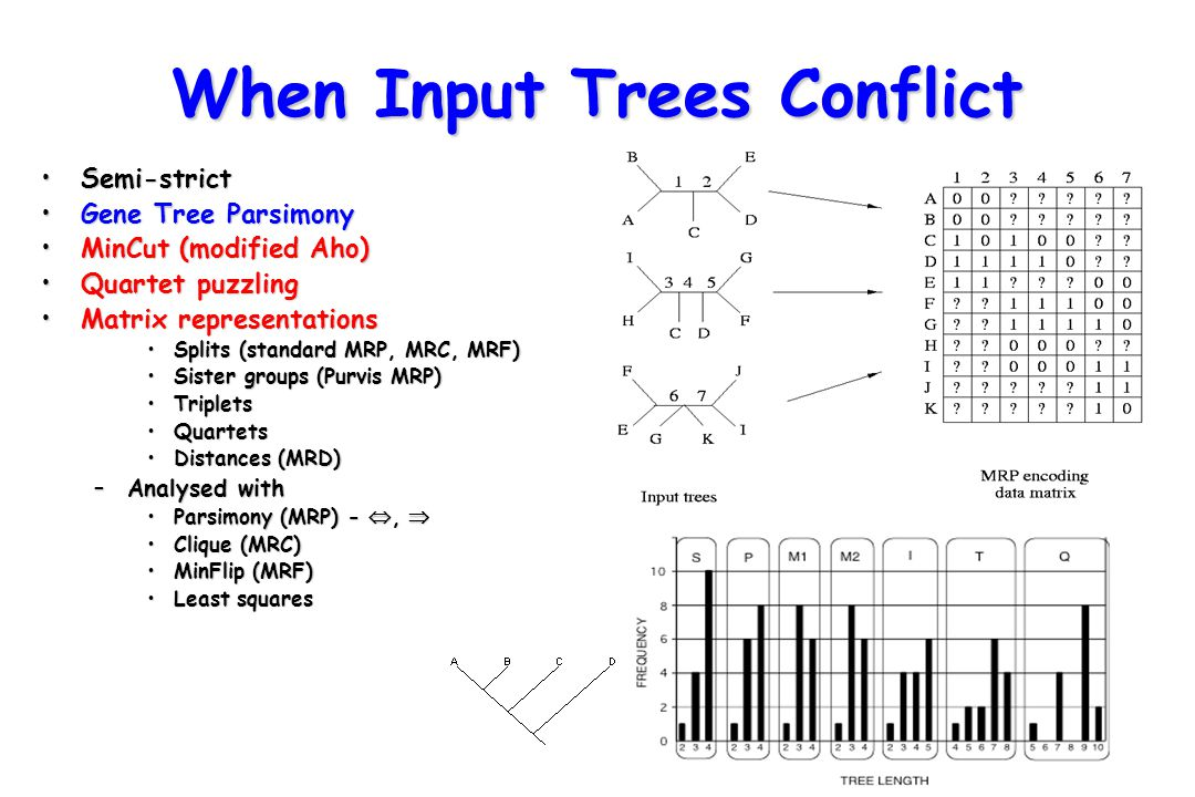 When Input Trees Conflict
