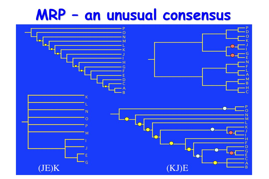 MRP – an unusual consensus
