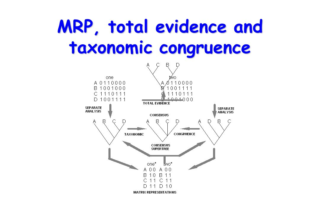 MRP, total evidence and taxonomic congruence
