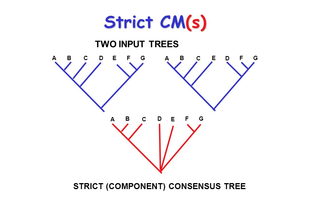 Strict CM(s) TWO INPUT TREES STRICT (COMPONENT) CONSENSUS TREE A B C D