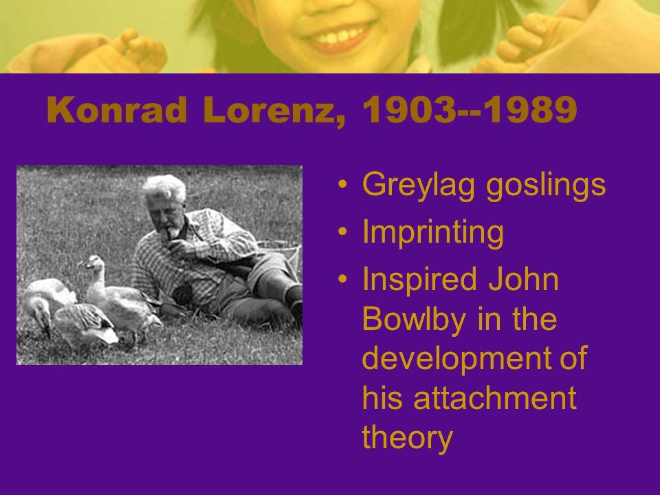 Konrad Lorenz, 1903--1989 Greylag goslings Imprinting