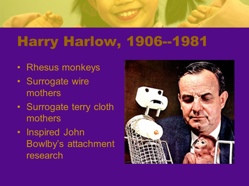 Harry Harlow, 1906--1981 Rhesus monkeys Surrogate wire mothers